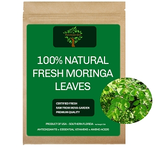 Fresh Moringa  Leaves - 2000 Leaves